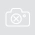 Laurens van Rooyen